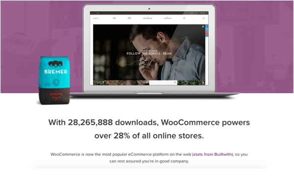 Why You Should Use WooCommerce for Your Online Store