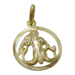 PENDANT, ZODIAC SIGN, AQUARIUS, 9K GOLD