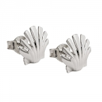 earrings studs, sea shell, silver 925